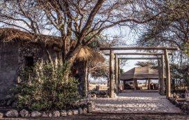 Best Luxury Hotels in Tanzania, Chem Chem Tarangire National Park