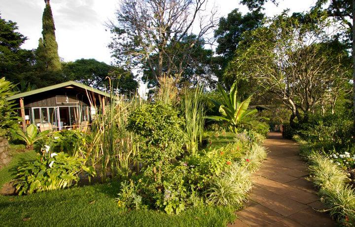 Best Luxury Hotels in Kenya, Gibbs Farm Karatu